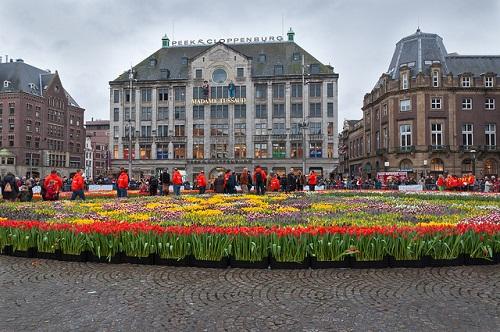 dam square tulips